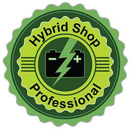 hybrid-icon